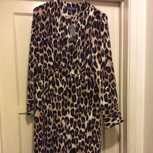 Leopard Dress from The Limited!